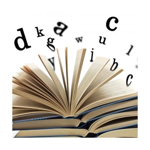 Concepções Iniciais Sobre a Gramática da Língua Portuguesa