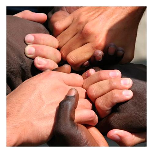 Valorize a Diversidade
